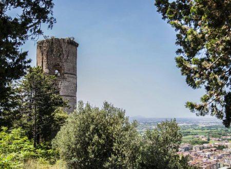 Castello di Maddaloni. Il fascino dell'abbandono.